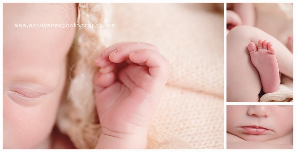 WendySheaPhotography_Massachusetts_Newborn_Photographer_0040